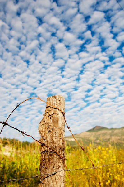 Early morning clouds with fence post and barbed wire in Cerocahui, Mexico by Ralph Velasco.