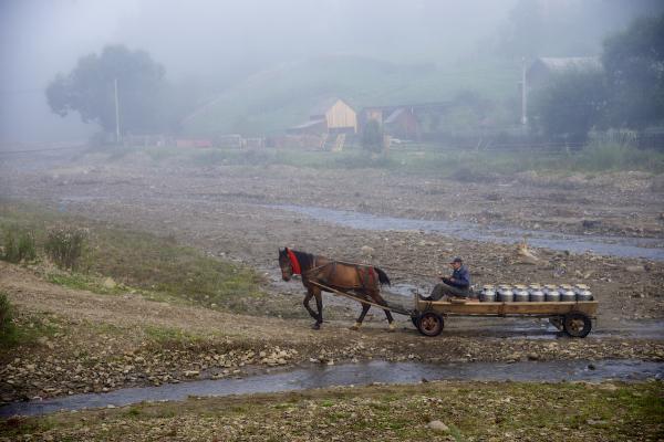 Milkman-with-Horse-in-River-Medium-Bucovina-Romania-Copyright-2014-Ralph-Velasco-600x400
