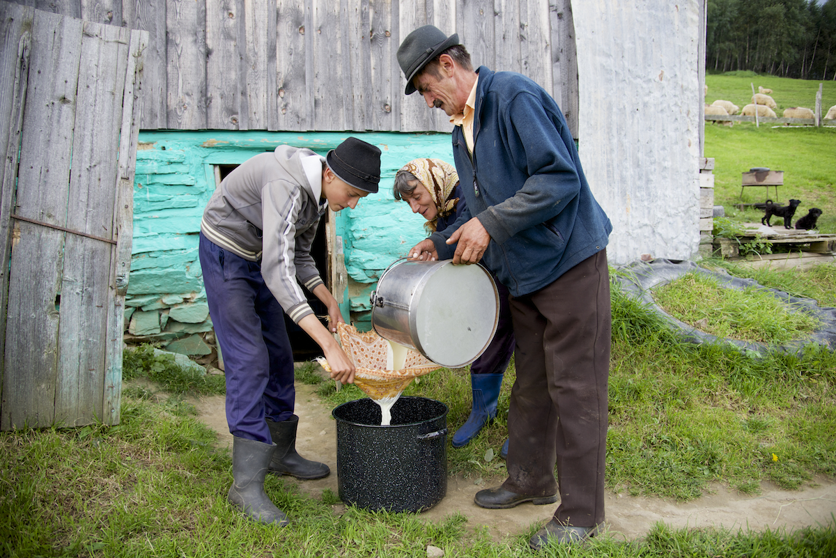 Dinu, Ileana and Nicu Filtering Milk through Handkerchief - near Sibiu, in Transylvania, Romania by Ralph Velasco