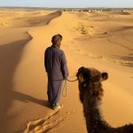 Camel Ride in the Sahara with Mystical Morocco Group