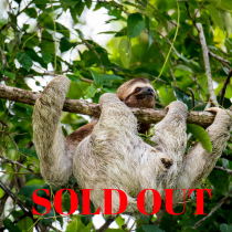 sold-out-costa-rica